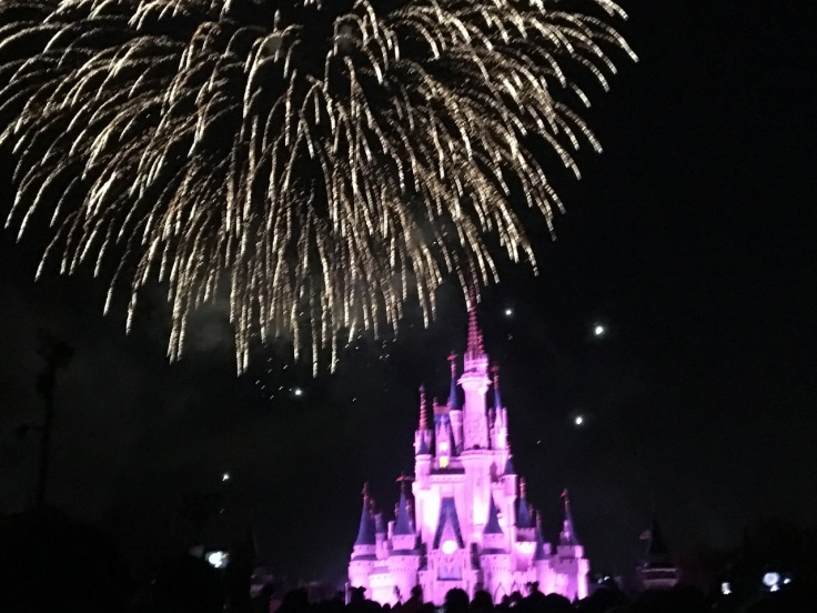 Fireworks over the Magic Kngdom